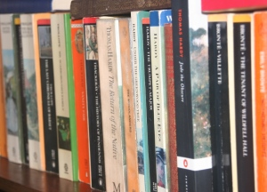 Bookshelf cropped small