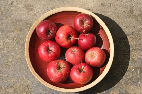Apples in a bowl small
