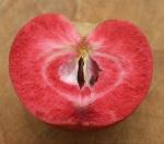 Single cut apple small